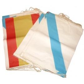 Bandera de Papel Galicia España